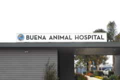 illuminated-sign-channel-letters-custom-signs-buena-animal-hospital